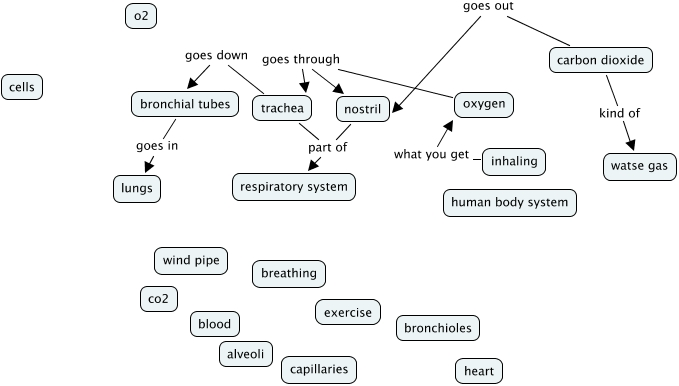 p2t7 breathing concept map