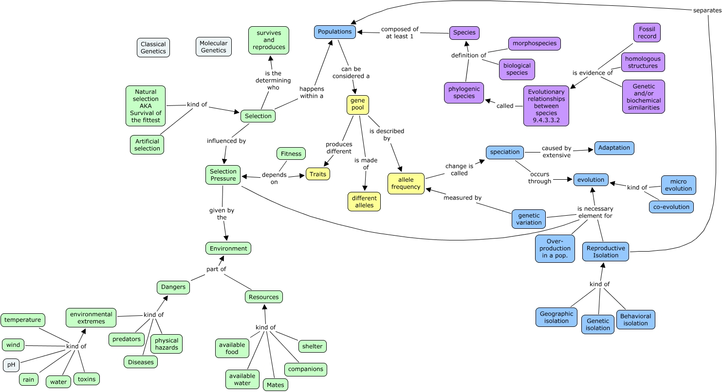 Concept Map About Evolution.Evolution Concept Map Small