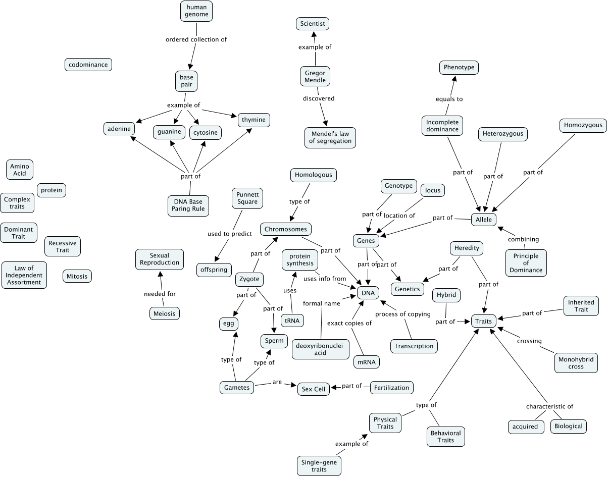 Juncal Genetics Concept Map